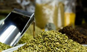 Best Quality Cardamom of Srilanka