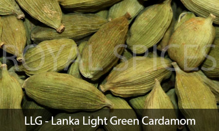 LLG Lanka Light Green Cardamom